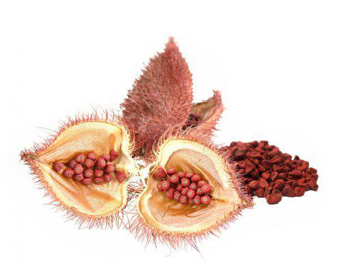 Annatto seeds, Bixin Norbixin natural colours natural colors colour color coloring colouring