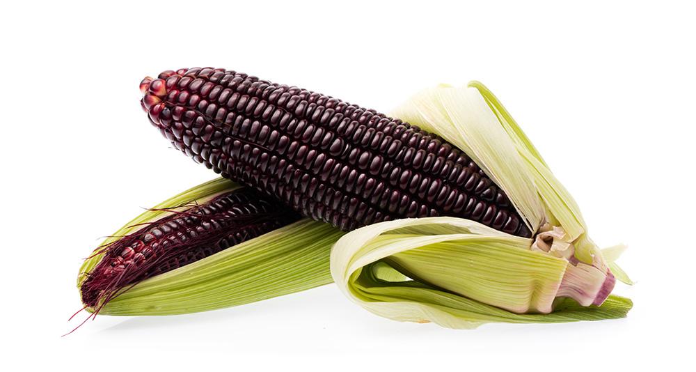 Bioconcolors, Purple corn, colouring foodstuff, natural colors, anthocyanin, pigments, hue